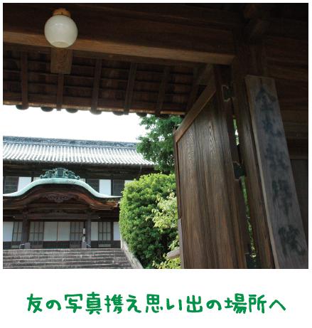 神様がつなぐ一本の道【金光新聞】