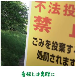 ごみ拾い通じ心に変化【金光新聞】