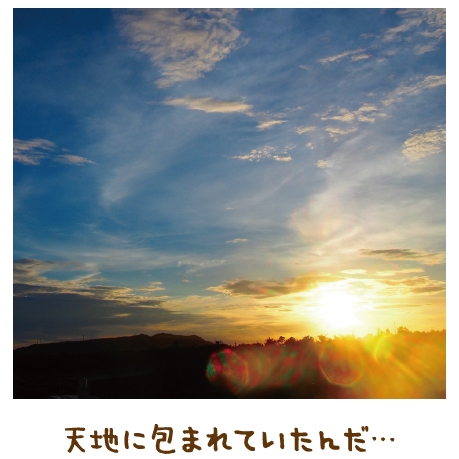 大地に座り神にすがる【金光新聞】
