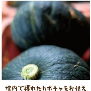 神計らいの中での出産【金光新聞】