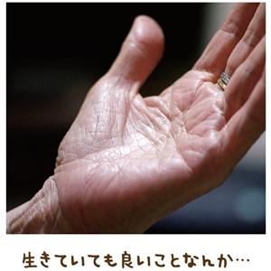 お取次頂き感謝の生活【金光新聞】