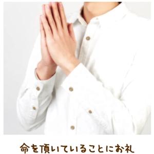 長男が示した信心の道【金光新聞】