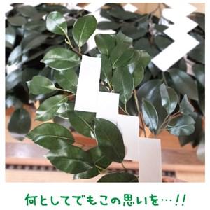 人生最後の玉串奉てん【金光新聞】