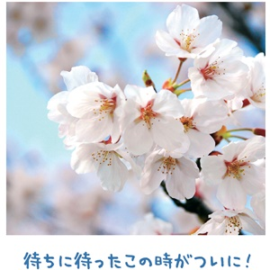 神働きは私の信心次第 【金光新聞】