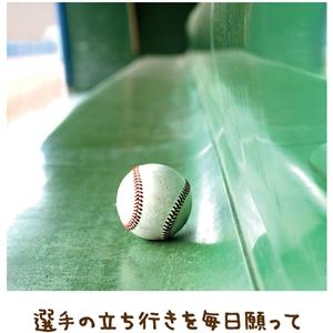 野球とご用に人生捧げ【金光新聞】